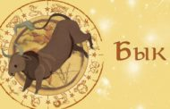Восточный гороскоп для Быка на 2019 год