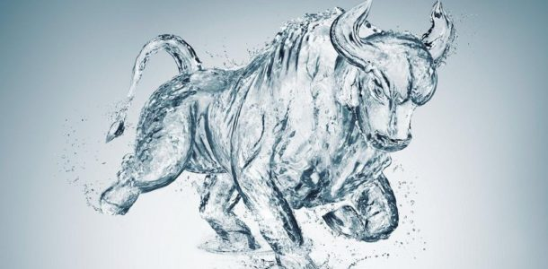 bull forecast for 2019