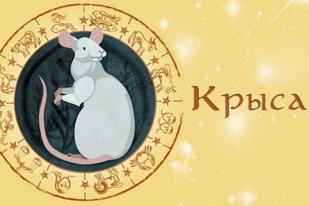 Гороскоп Крыса на январь 2019 год
