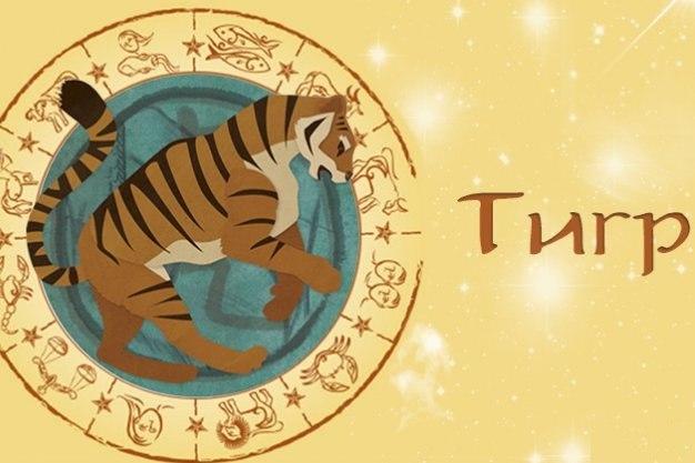 Гороскоп на 2019 год для Тигра на каждый месяц