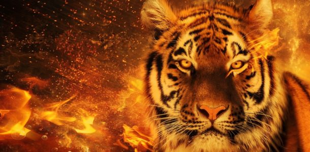 Картинки арт тигра