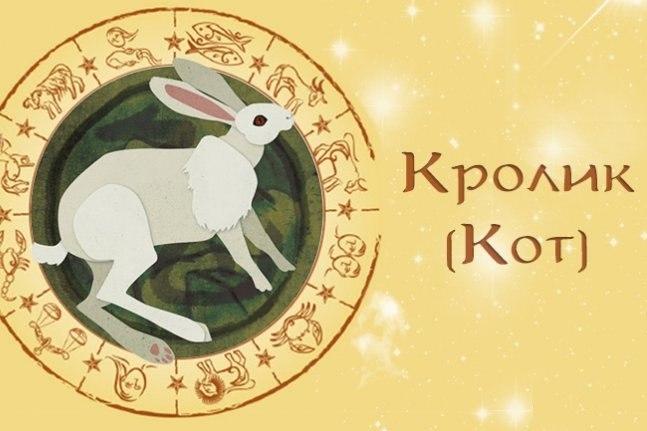 Гороскоп Кролик Кот на январь 2019 год