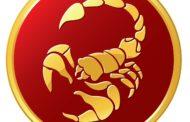 Гороскоп для Скорпионов на 2019 год: женщина и мужчина