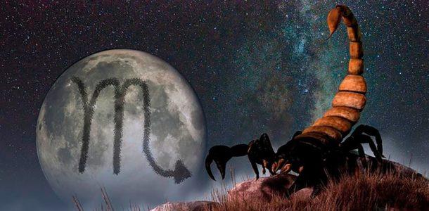 гороскоп на 2019 скорпион женщина