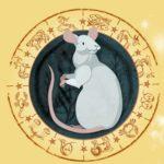 2019 год для крысы