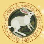 китайский гороскоп 2019 для кролика