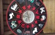 2019 год кого по Восточному (Китайскому) гороскопу
