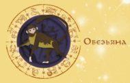 Восточный гороскоп для Обезьяны на 2019 год