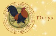 Восточный гороскоп для Петуха на 2019 год