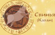 Восточный гороскоп для Свиньи (Кабана) на 2019 год