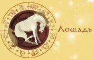 Восточный гороскоп для Лошади на 2019 год