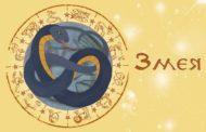 Восточный гороскоп для Змеи на 2019 год