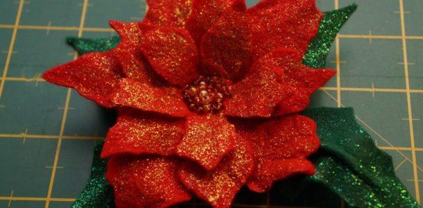цветок пуассентии