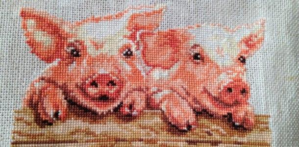 вышивка со свинками