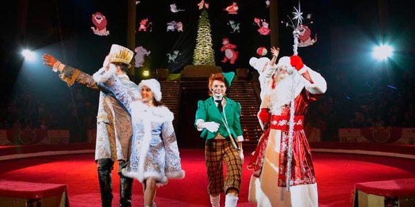 Новый год в цирке