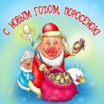 поздравление с годом свиньи