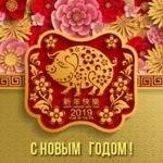 как поздравить с годом свиньи