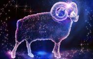 Шуточный гороскоп на 2019 год Свиньи
