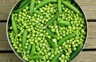 Хотите иметь зеленый горошек круглый год? – Заморозьте его!